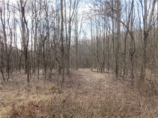 Lot 2 Horseshoe Drive, Freeport, PA - USA (photo 3)
