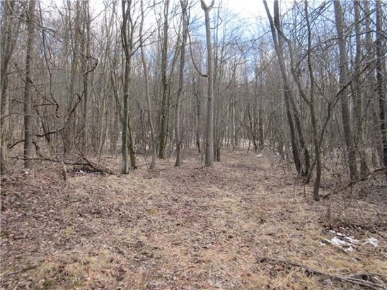 Lot 2 Horseshoe Drive, Freeport, PA - USA (photo 4)