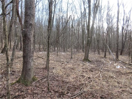 Lot 2 Horseshoe Drive, Freeport, PA - USA (photo 5)