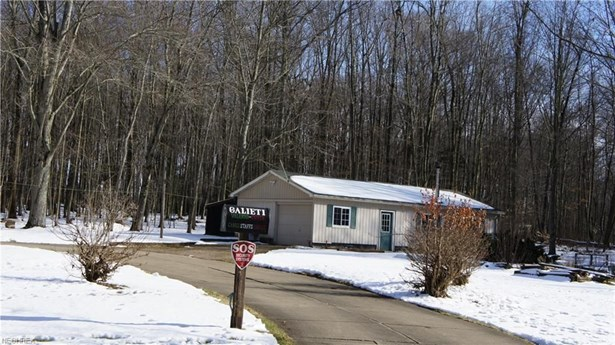 7433 Crory, Canfield, OH - USA (photo 3)