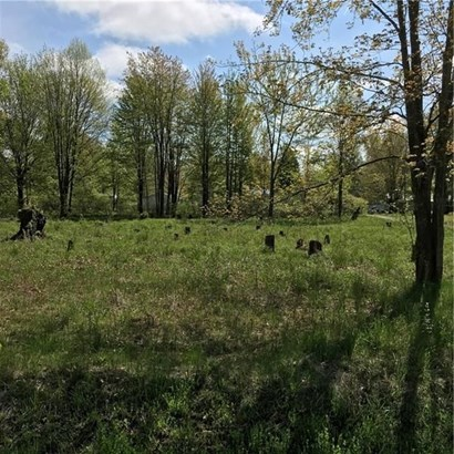 Lot 14 Avon And Duff Dr, Linesville, PA - USA (photo 2)