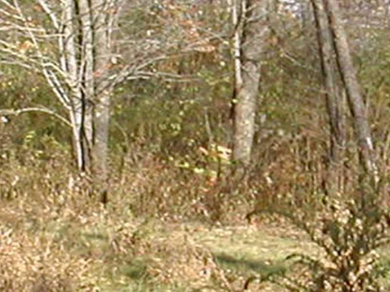 0 Spring Run, Butler, PA - USA (photo 1)