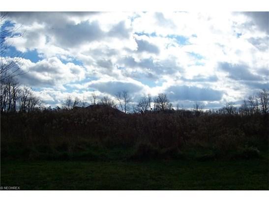 Sageberry, North Lima, OH - USA (photo 1)