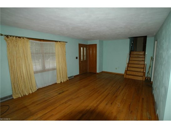528 Maplewood, Struthers, OH - USA (photo 5)
