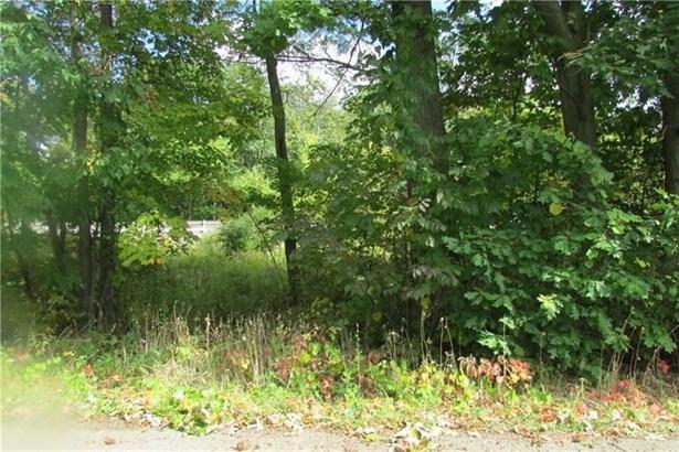Lot N & S Us422w & Ambrosia Rd, Pulaski, PA - USA (photo 2)