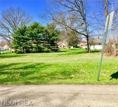 Prospect, Newton Falls, OH - USA (photo 3)