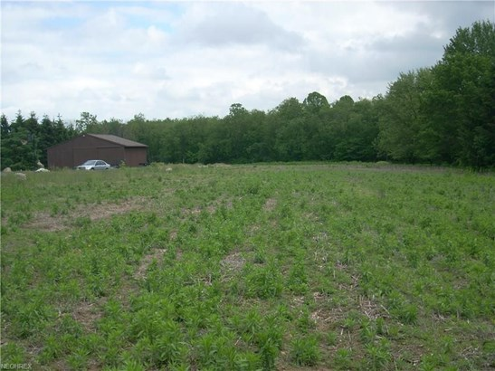 Lot #23 Columbiana, New Middletown, OH - USA (photo 1)