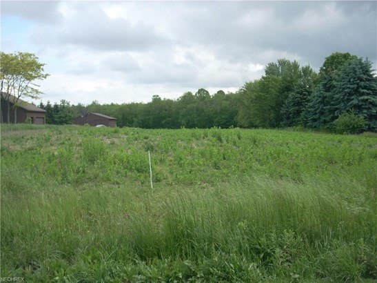 Lot #23 Columbiana, New Middletown, OH - USA (photo 2)