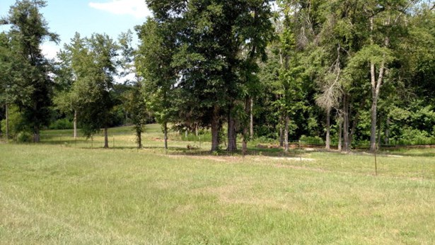 2428 Highway 25, Keysville, GA - USA (photo 2)