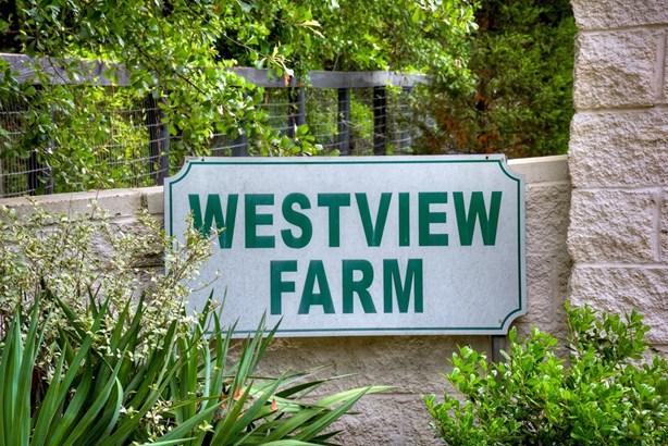 388 West Rd, Aiken, SC - USA (photo 4)