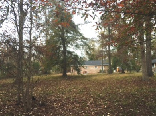 419 Mcintosh Drive, Waynesboro, GA - USA (photo 2)