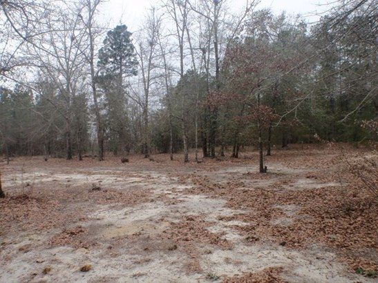 1230 Seven Pines Rd, Barnwell, SC - USA (photo 2)