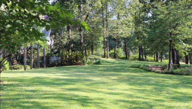 250 Hideaway Lane, Wagener, SC - USA (photo 3)