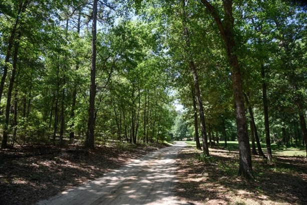 372 Old Tory Trail, Aiken, SC - USA (photo 3)