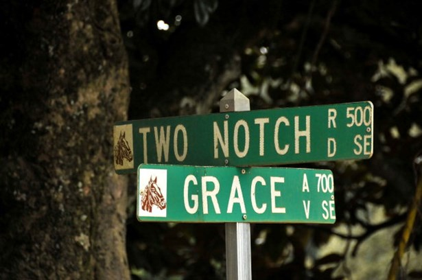 785 Grace Avenue, Aiken, SC - USA (photo 2)
