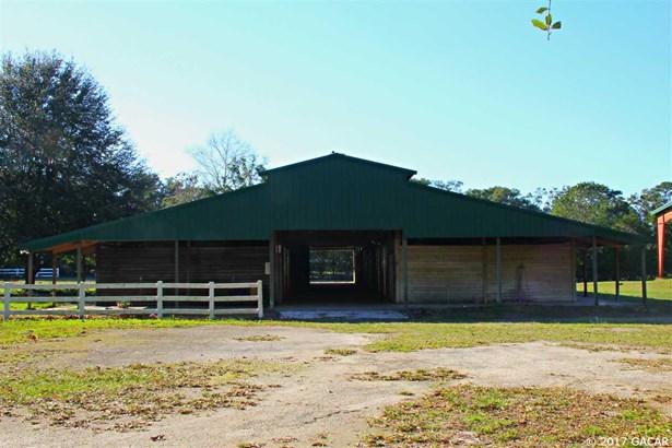 Farm, Other - Newberry, FL (photo 2)