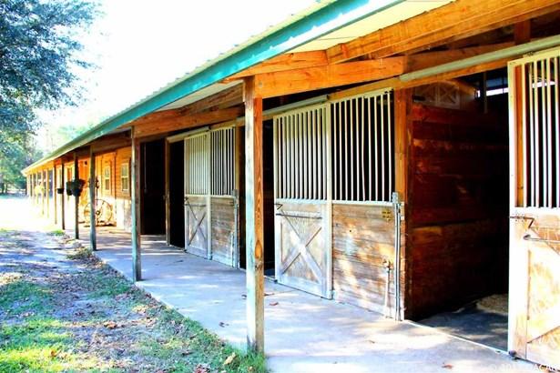 Farm, Other - Newberry, FL (photo 5)