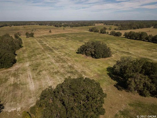 Agricultural - Williston, FL (photo 3)