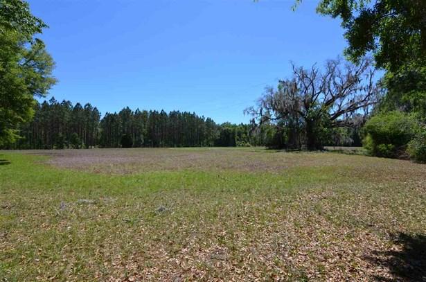 Timberland - Alachua, FL (photo 1)