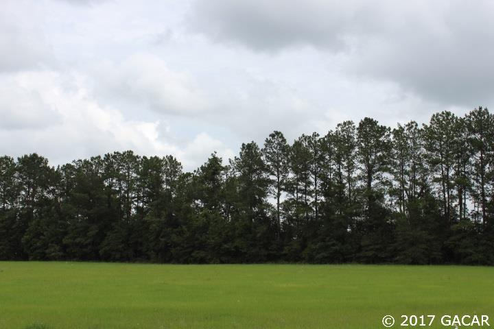 Commercial - Lake City, FL (photo 1)
