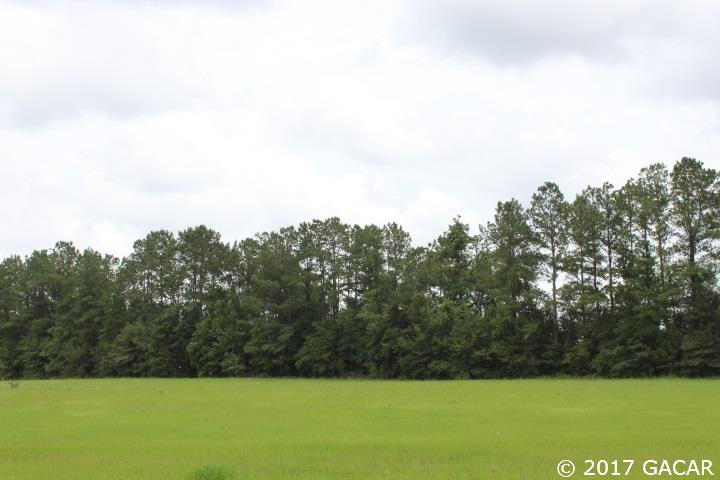 Commercial - Lake City, FL (photo 2)