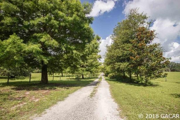 Farm, Contemporary - Newberry, FL (photo 3)