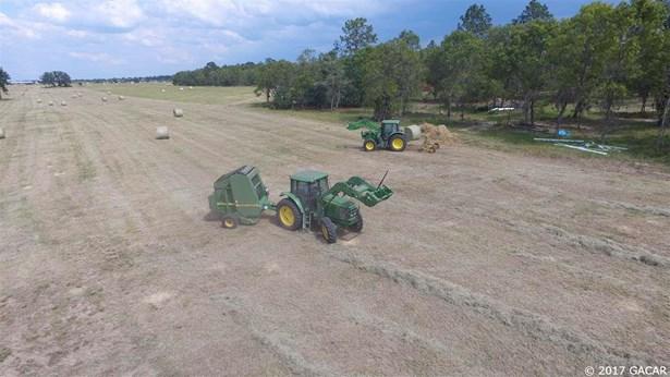 Agricultural - Bronson, FL (photo 2)