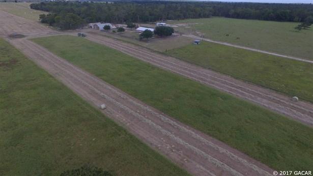 Agricultural - Bronson, FL (photo 3)