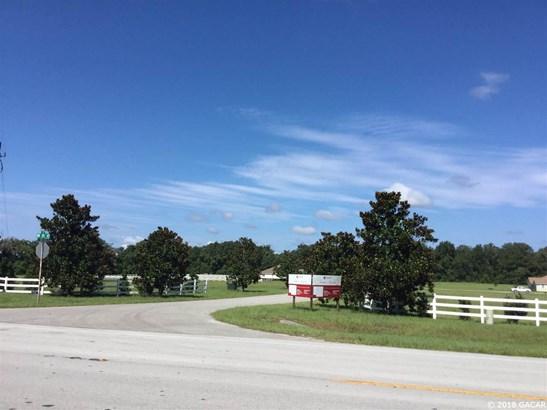 Residential-Open Builder - High Springs, FL (photo 3)