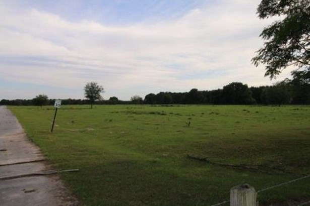 Agricultural - Trenton, FL (photo 2)