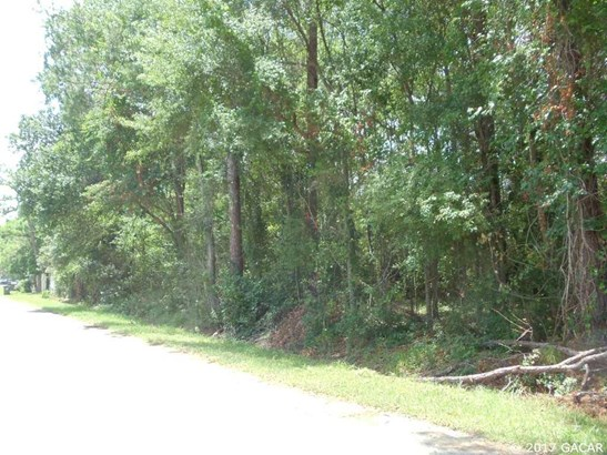 Residential-Open Builder - Baldwin, FL (photo 4)