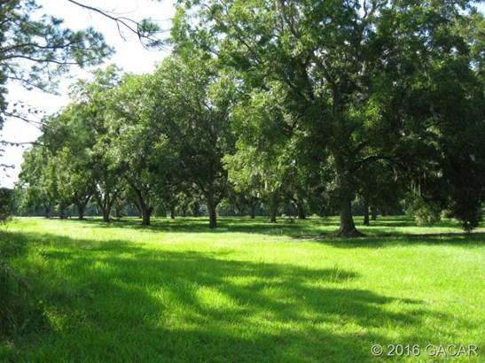Farm, Other - Waldo, FL (photo 2)