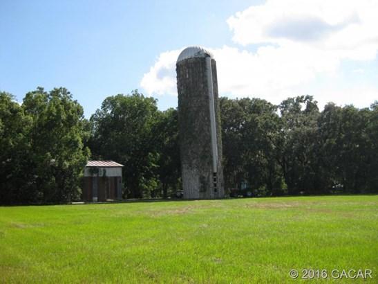Farm, Other - Waldo, FL (photo 3)