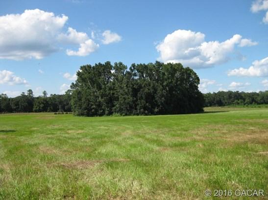 Farm, Other - Waldo, FL (photo 4)