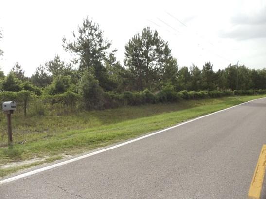 Agricultural - Hawthorne, FL (photo 5)
