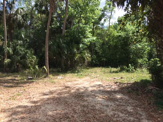 Other - Homosassa, FL (photo 5)