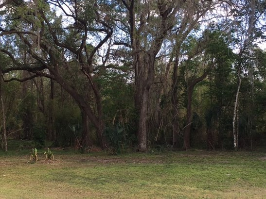 Detached, Ranch,Spanish - Micanopy, FL (photo 3)