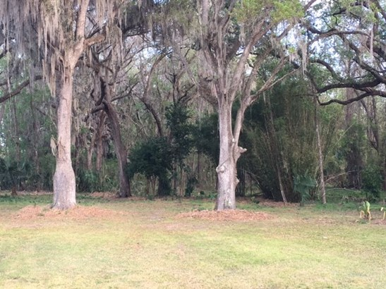 Detached, Ranch,Spanish - Micanopy, FL (photo 4)
