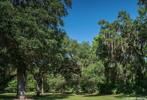 Agricultural - Micanopy, FL (photo 1)