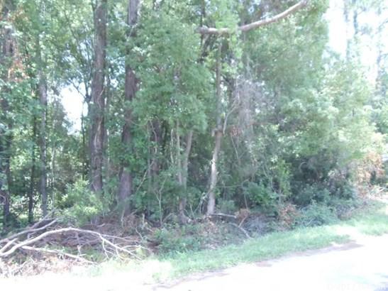 Residential-Open Builder - Baldwin, FL (photo 3)