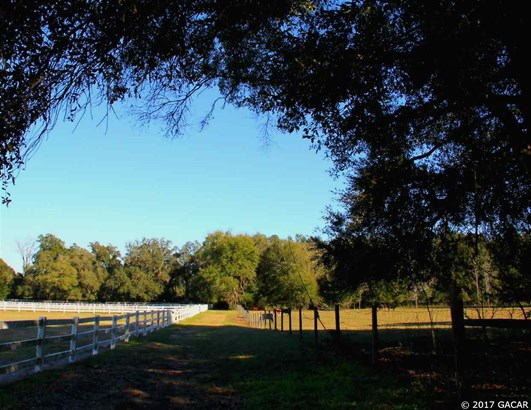 Farm, Other - Newberry, FL (photo 3)