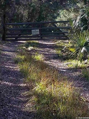 Timberland - Hawthorne, FL (photo 2)
