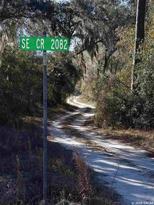 Timberland - Hawthorne, FL (photo 5)