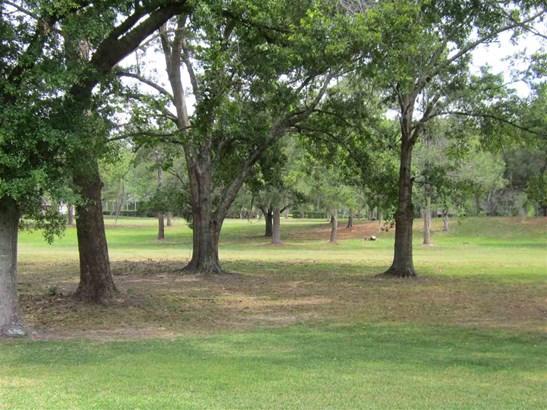 Contemporary,Ranch, Detached - Alachua, FL (photo 3)