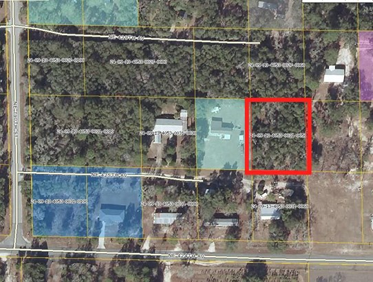 Residential-Open Builder - Old Town, FL (photo 1)