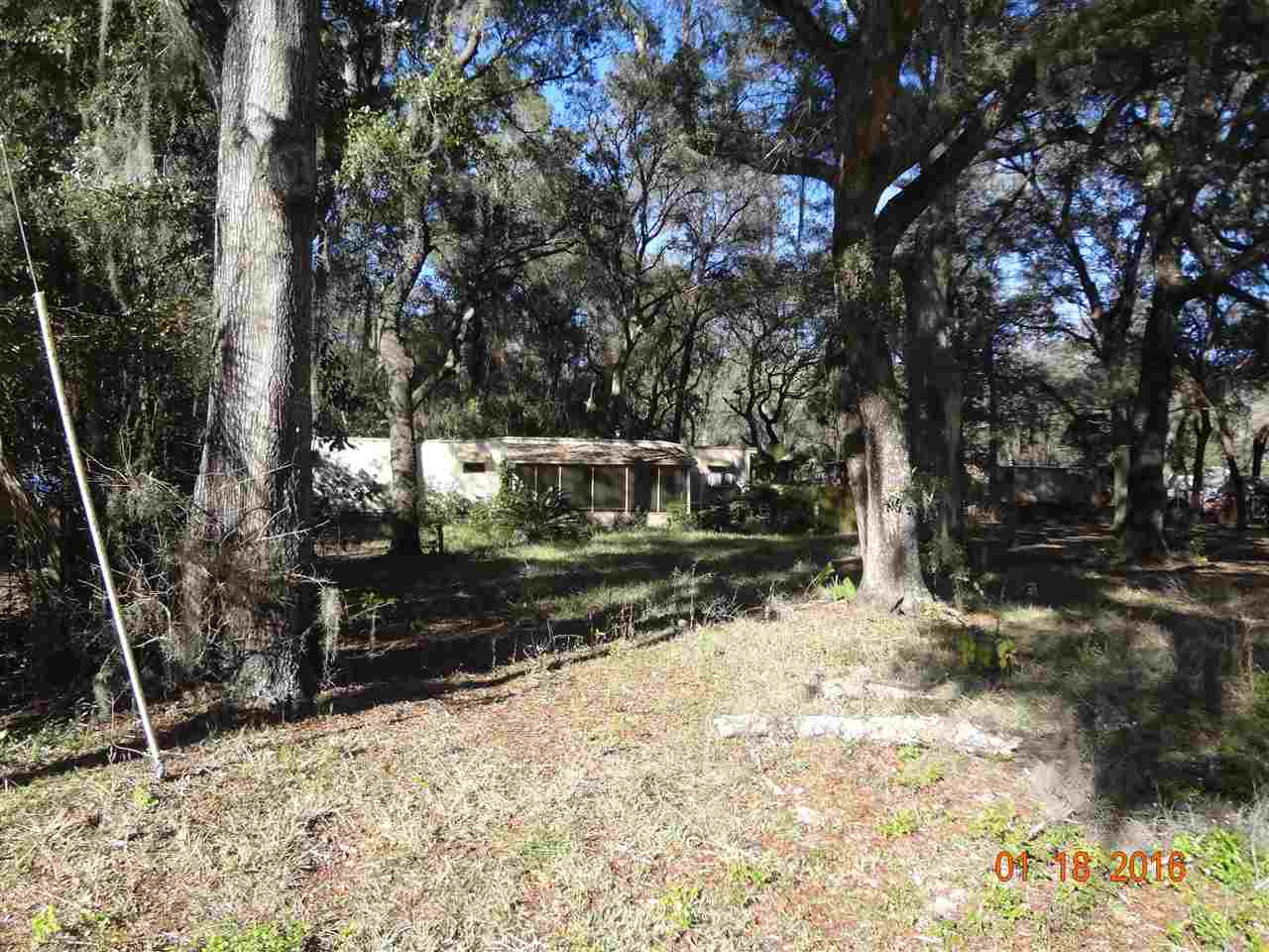 Other - Fanning Springs, FL (photo 2)