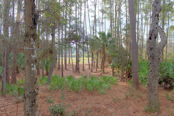 Golf Course View - FERNANDINA BEACH, FL