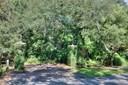 Golf Course View - FERNANDINA BEACH, FL (photo 1)