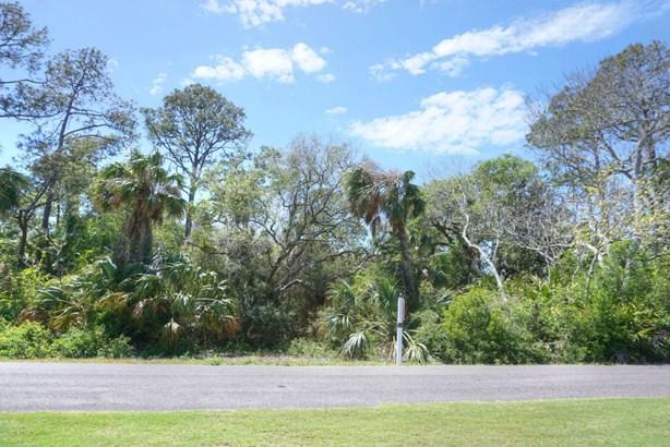 Regular Lot,Wooded - FERNANDINA BEACH, FL (photo 3)