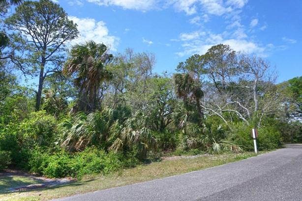 Regular Lot,Wooded - FERNANDINA BEACH, FL (photo 4)
